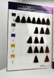 Hightech- Pearlcolorful Haar-Farben-Diagramm -  Agenzien gewünscht/Eigenmarke