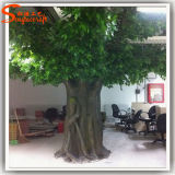 Albero artificiale del Ficus della decorazione dell'interno calda di vendita
