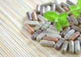 Poudres pharmaceutiques remplissant matériel pour des capsules