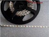3528 12V 5mm het Brede LEIDENE van de Garantie van de Raad van de Kring 120LEDs/M 3years Flexibele Lichte Witte Warme Witte Blauw van de Strook