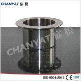 Extremidade do prato de aço inoxidável A403 (304, 310S, 316)