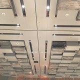Plafond en aluminium de modèle spécial pour la décoration intérieure