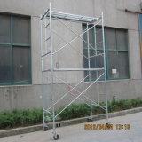 Lo SGS di Zds ha approvato un'impalcatura del blocco per grafici per costruzione