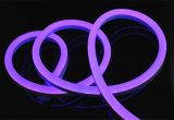 O cabo flexível de néon do diodo emissor de luz da mudança 5050 da cor do tamanho enorme com Ce, RoHS alistou