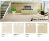 Graue Farben-volle Karosserien-Fußboden-Fliesen in 60*60cm (G6603HTS)