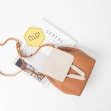 Sacchetto bello di Crossbody di stile, sacchetto di cuoio delle donne, unità di elaborazione, A328