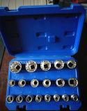 """19PCS-1/2 """" Dr. Mutil-Dent Soceket Set en emballage de boîtier plastique (FY1719B1)"""
