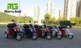 Elektrische Driewieler met drie wielen met AchterMand voor Gehandicapten
