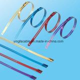 Edelstahl-Strichleiter-einzelner Barden-Verschluss-Kabelbinder