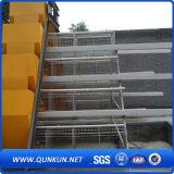 Gute Qualitätshuhn-Rahmen von China