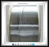 Tubo de la bobina del acero inoxidable de la fábrica 316L de China