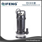 Giardino Stainless Steel Motor Shell Clarified Water Pump con Float