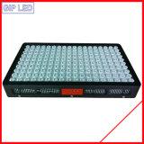 300W-1200W 온실 또는 의학 플랜트 LED는 도매를 위한 빛을 증가한다