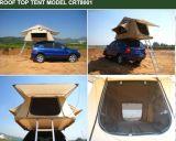 سقف خيمة علبيّة (8001)
