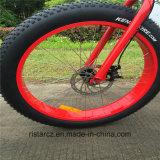 Bici elettrica grassa del pneumatico 48V 500W (RSEB-506)
