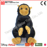 供給の安くぬいぐるみ猿