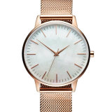Nouveau design en acier inoxydable Elegent Ladies Quarts Wrist Watch