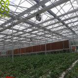 Estufa plástica da agricultura da folha da multi extensão