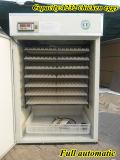 Incubateurs automatiques certifiés par CE d'oeuf de caille à vendre (KP-10)