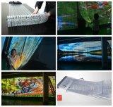 Anblick-Vorhang des Huasun Streifen-LED