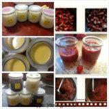 Hello de MiniKruik van het Glas van de Yoghurt van de Pot 100ml