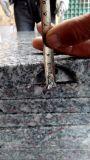 Плитки гранита G602 для плакирования/настила/Aving стены
