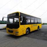 35-50 시트 수용량 전송자 밝은 도시 버스