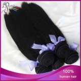6A UnprocessedインドのVirgin Human Hair Stright Hair Extensions