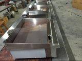 Gril et gauffreuse électriques de Comercial pour griller la nourriture (GRT-E550-2)