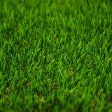 Hierba artificial del estadio para el Es que ajardina