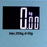 persönliche Karosserien-Schuppe des Großbild (88X55mm) elektronischen GlasHotelzimmer-200kg
