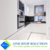 Nuova mobilia moderna Handless popolare dell'armadio da cucina (ZY 1047)