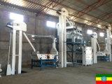 Linha de processamento maquinaria da semente da planta/cevada da limpeza do trigo