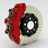 Disques de frein avec la haute performance par OIN