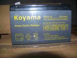 12V14ah実用的な手段のための深いサイクルAGM電池