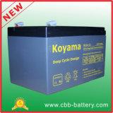 tiefe Schleife 12V14ah AGM-Batterie für Gebrauchsfahrzeug