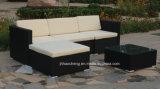 Meubles extérieurs de jardin de sofa de rotin de PE