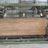 18mm B/C 급료 1220*2135mm 자연적인 박달나무 E1 접착제