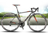 Bicis baratas 2016 del camino de la fibra del carbón de la bici del camino de la bicicleta del carbón