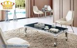 Table basse moderne en verre d'acier inoxydable de salle de séjour