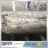 Belle scala/scaletta/scala del granito di Fox dello Snowy per il pavimento interno