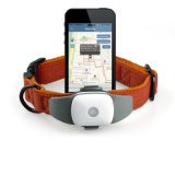 GPS van Followit Appello 4p Drijver de van uitstekende kwaliteit voor GPS van de Kat van het Huisdier Persoonlijke, MiniDrijver, GPS Volgende Spaander, Vrij APP Volgend Apparaat