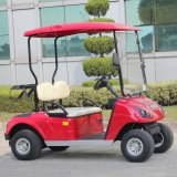 Navulbare Battery Electric 2 Passenger Golf Cart met Ce (DG-C2)
