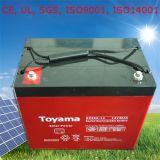 Batteria solare 12V della Banca della batteria del sistema solare con la garanzia di cinque anni