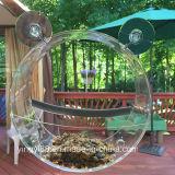 Alimentador de acrílico del pájaro del claro superior de la ventana con el rectángulo de regalo hermoso