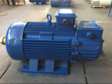 Yzr Series AC Motor for Metallurgy and Lifting Type 160L-8