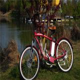 熱いモデル男性浜の電気自転車Rseb-1214
