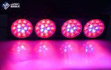 Aliuminu, das Pflanze der Modularbauweise-180W LED unterbringt, wachsen für Gewächshaus hell