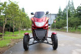 scooter adulte de Trike d'engine de gaz de 150cc Chine