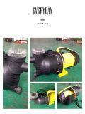 (SDP600-13) Bomba de serviço público do sistema de extinção de incêndios de alta pressão do jardim com conexão da mangueira e filtro de água